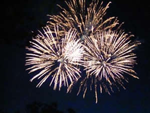 Staten Island July 4th Fireworks NYC | staten island july 4th fireworks SI 4th of july fireworks conference house tottenville si nyc
