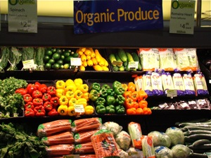 Organic Food in NYC | new york city organic food nyc organic food nyc nys organic food